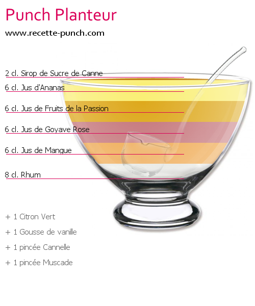 Cocktail PUNCH PLANTEUR