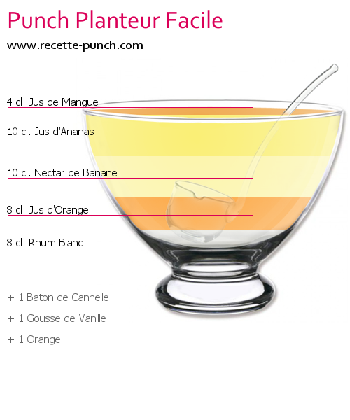 Cocktail PUNCH PLANTEUR FACILE